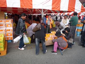 200811153