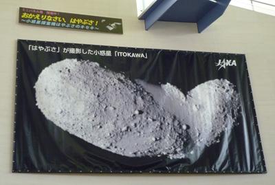201011293